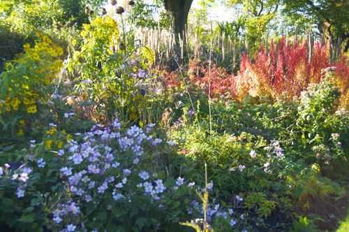 Autumn Flower Bed Botanic