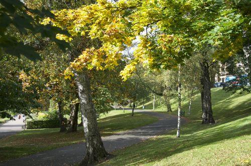 Kelvingrove Paths